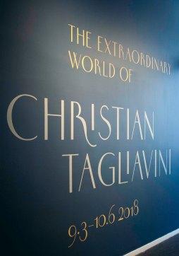 Extraorninairy World of Chrintian Tagliavini